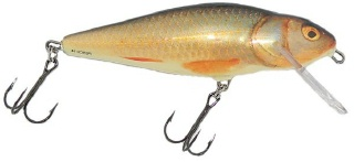 0001_Salmo_Perch_14_cm_[Real_Roach].jpg